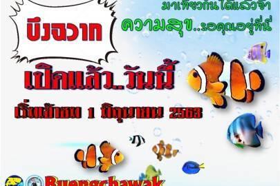 S__81518641